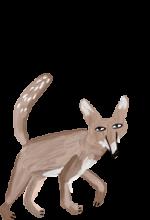 img_fox